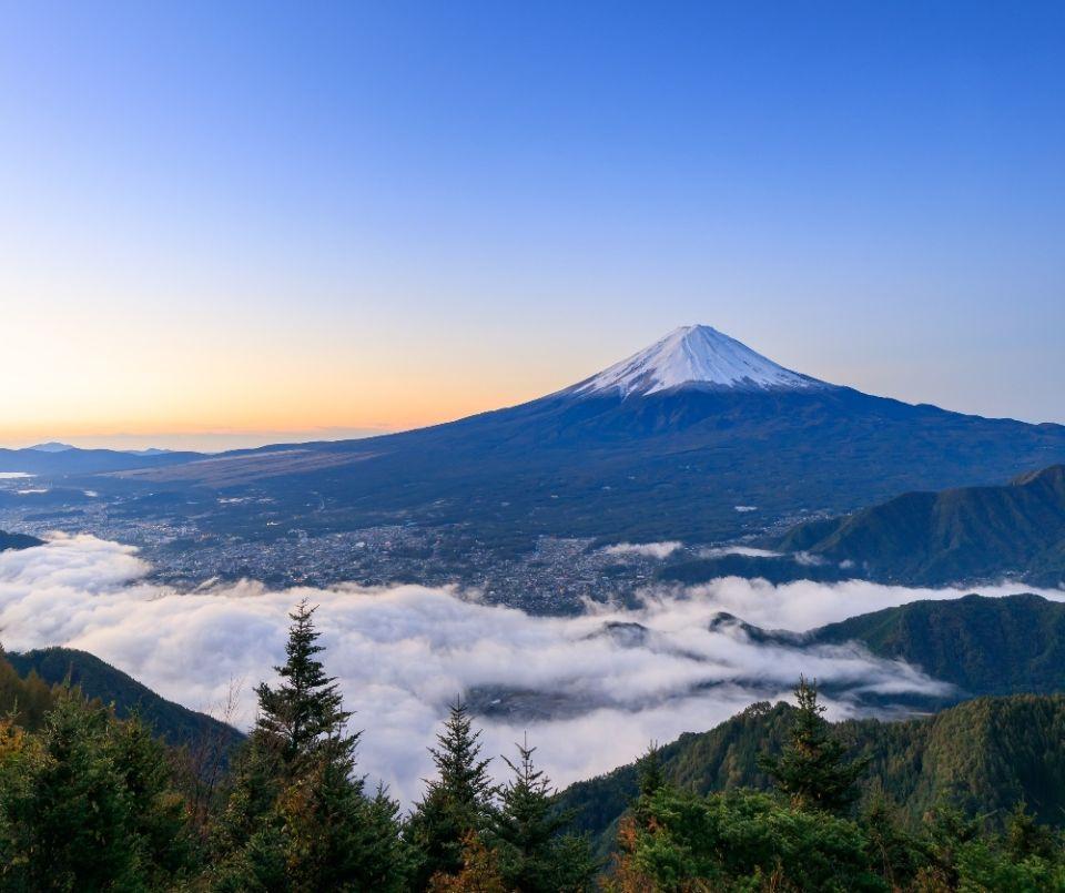 Mt Fuji tours.jpg